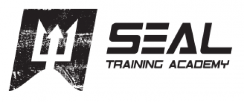 Blogging assignment: Navy SEAL Online Workout Program Review