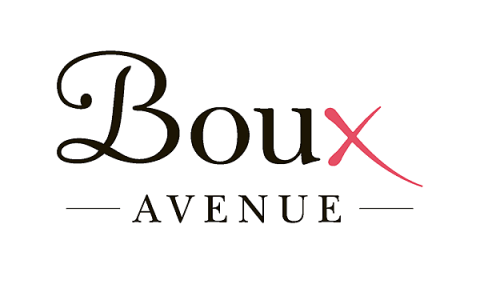 Boux AVENUE blogger outreach case study