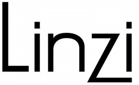 Blogging assignment: Linzi Shoes Seeks Influential Fashion Bloggers for Reviews! (Worldwide bloggers)