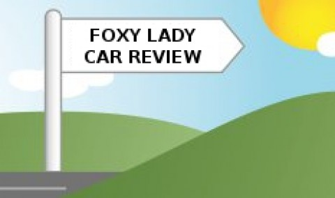 Blogging assignment: A Birds Eye – Car Reviews by and for women (UK bloggers)