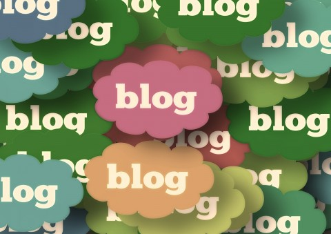 17 bloggers share their thoughts on what makes a good or standout blog
