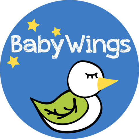 Blogging assignment: Receive a Free Dummy Clip by Baby Wings for Review (UK Bloggers)