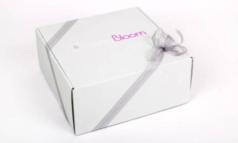 Sunday Review: Sassy Bloom Subscription Box (6 month old girl)
