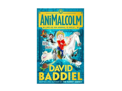 UK blogging assignment: David Baddiel Childrens Book Review – Parents of 8 – 11-year-old girls and boys – Closes 15th May 2017