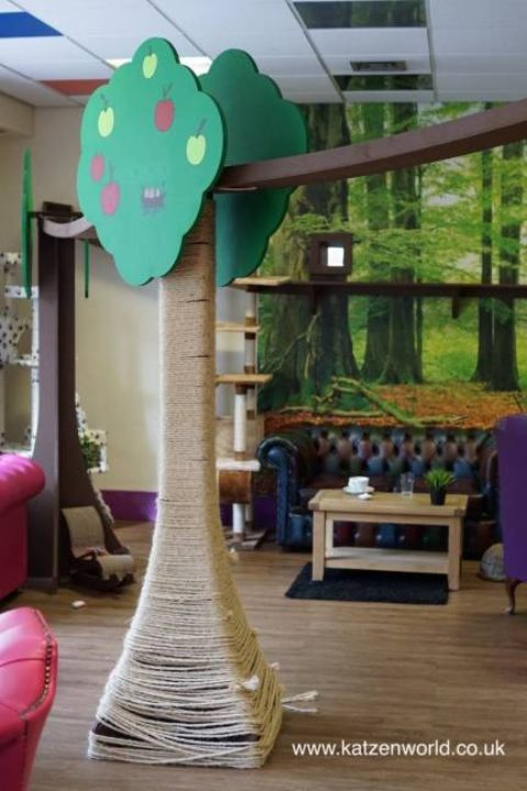 Our visit to Kitty Café – Nottingham: Cafe turned Magical Forest