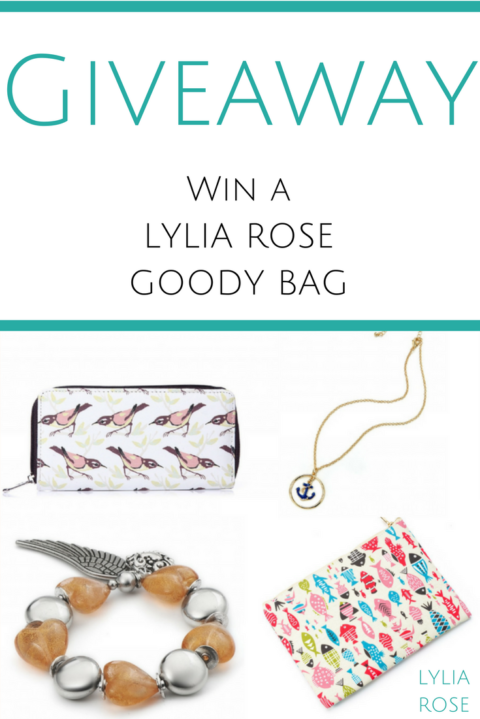 Blogger @lyliarose UK Giveaway: Win a Fashion Accessories Goody Bag – Closes 01/24/2018