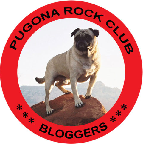 UK, US & Worldwide blogging assignment: Blogger Club Open Enrolment. Closes 31 May 2019